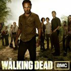icon140_twd_4season_10