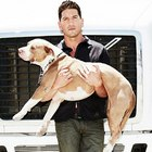 icon140_bernthal_1