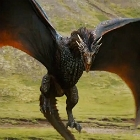 icon140_got_drogon